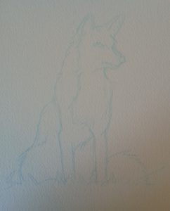 Esquisse du renard au crayon bleu