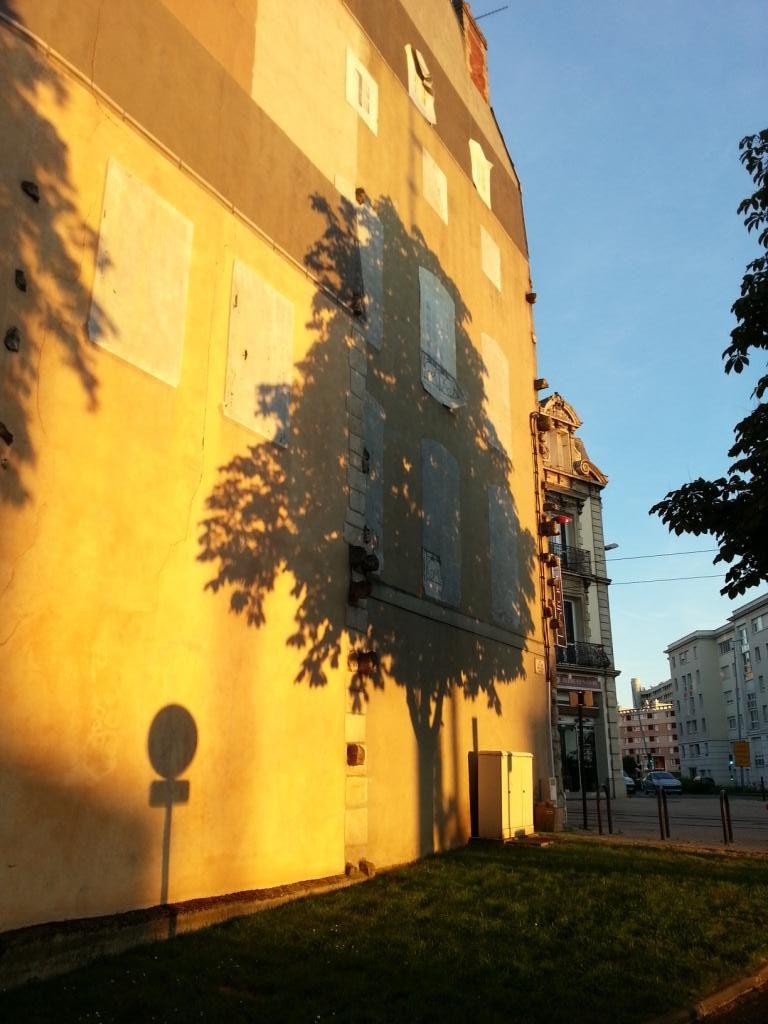 Ombre arbre sur façade, lumière du soir
