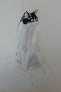 Aquarelle chatte Oreo en cours